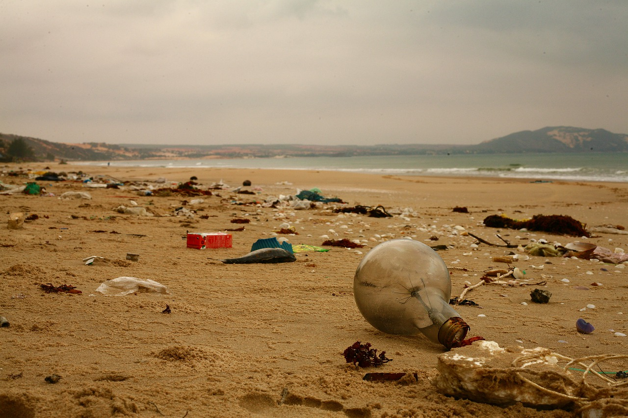 Volunteer for a clean up | Keep our seas and landscapes safe